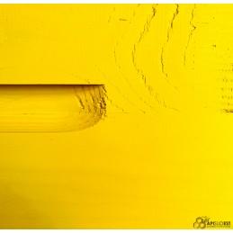 Hausse dadant jaune + cadres