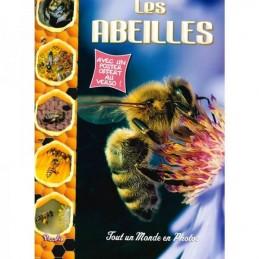 Livre les abeilles tout un...